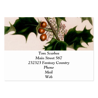 Holly berries pack of chubby business cards
