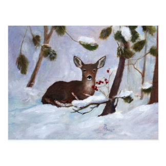 Holly Berry Deer Postcard