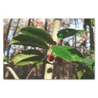 Holly Leaves I Holiday Christmas Nature Botanical Tissue Paper