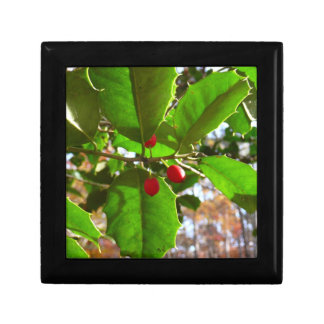 Holly Leaves II Holiday Nature Botanical Gift Box