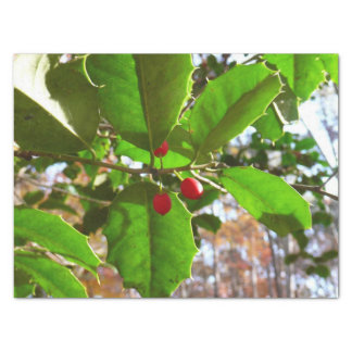 Holly Leaves II Holiday Nature Botanical Tissue Paper