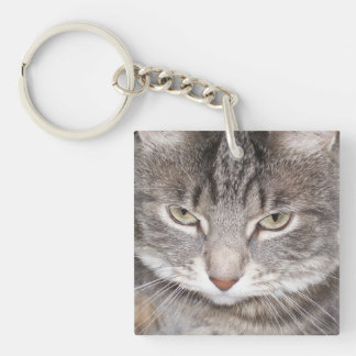 Holly the Cat Single-Sided Square Acrylic Key Ring