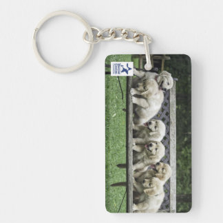 Holly's Half Dozen bench keychain