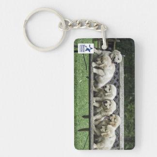 Holly's Half Dozen bench keychain Rectangular Acrylic Key Chains