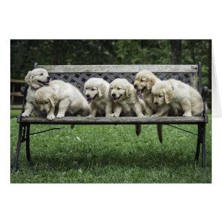 Holly's Half Dozen bench photo card