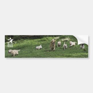 Holly's Half Dozen romp bumper sticker