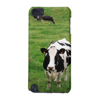 Holstein cow iPod touch (5th generation) case