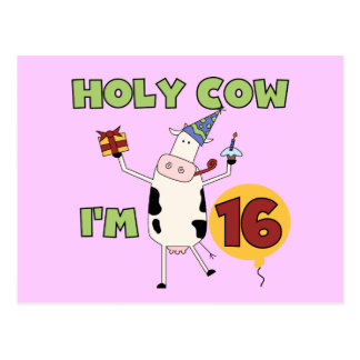 Holy Cow I'm 16 Tshirts and Gifts Postcard