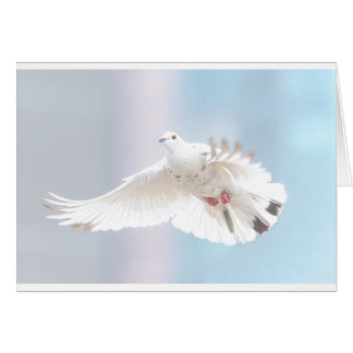 Holy Spirit dove Card