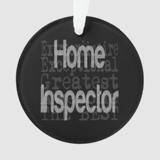 Home Inspector Extraordinaire