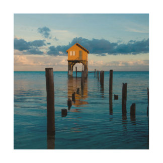 Home on the Ocean in Ambergris Caye Belize Wood Wall Decor