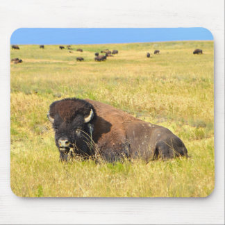 Home On The Range Mouse Pad