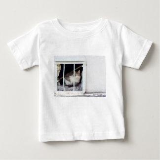 Homeless cat observes street baby T-Shirt