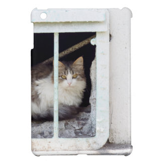 Homeless cat observes street iPad mini cover