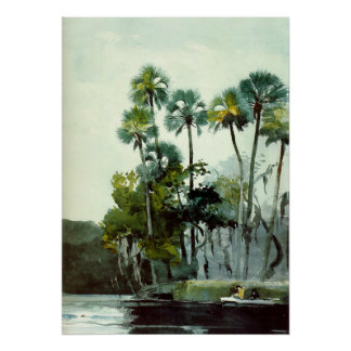 Homer - Homosassa River Poster
