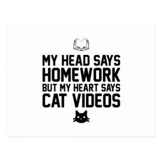 Homework or Cat Videos Postcard