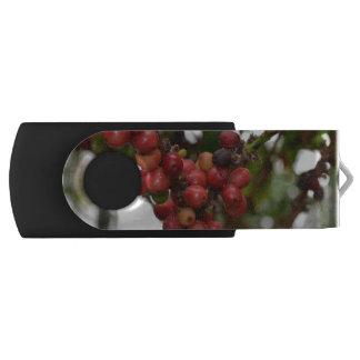 Honduras Coffee Beans Swivel USB 2.0 Flash Drive