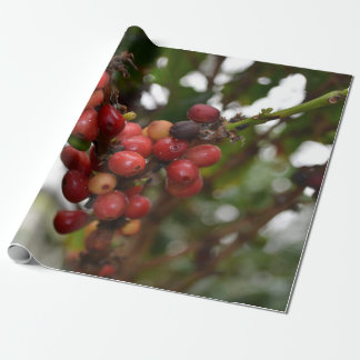 Honduras Coffee Beans Wrapping Paper