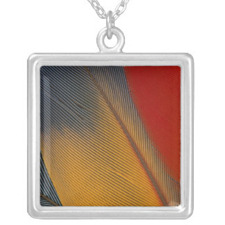 Honduras. Endangered scarlet macaw feathers, Square Pendant Necklace