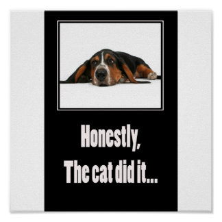 Honestly, the cat did it... poster