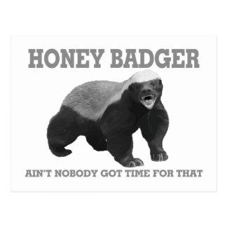 Honey Badger Ain't Nobody Got Time For That Postcard
