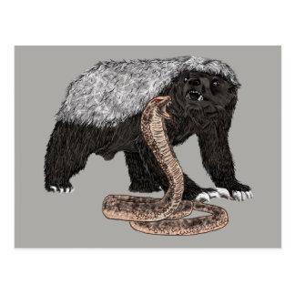 Honey badger and cobra sticker postcard