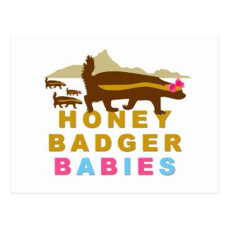 honey badger babies postcard