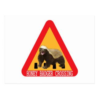 Honey Badger Crossing Sign Postcard