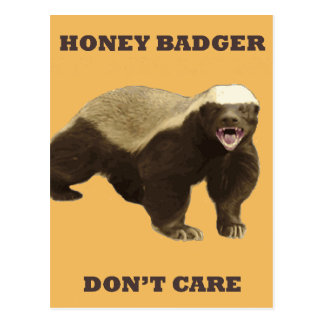 Honey Badger Don t Care On Beeswax Background Postcard