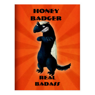 Honey Badger don t care Postcard