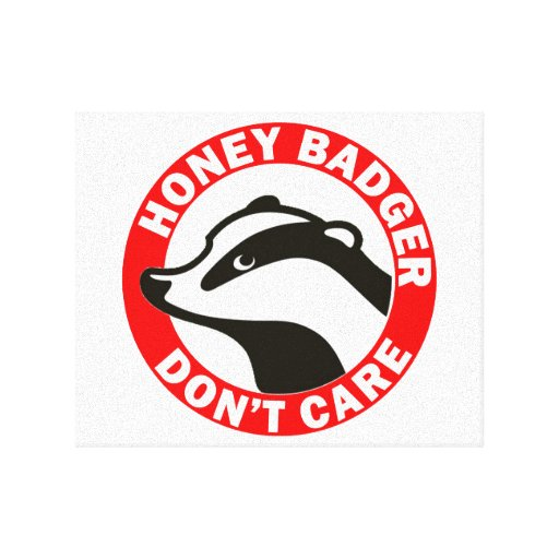 Honey Badger Don't Care Stretched Canvas Print