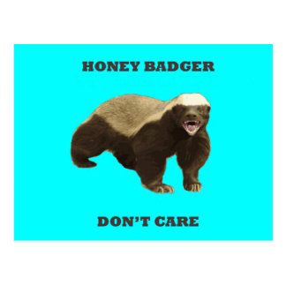 Honey Badger Don't Care On Aquamarine Turquoise Postcards