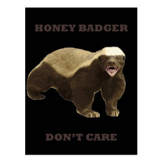Honey Badger Don't Care On Black Background. Funny Post Cards