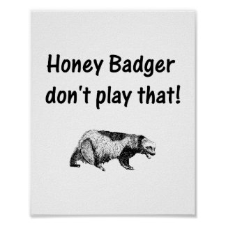 honey badger don't play that poster