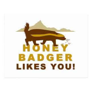Honey Badger Likes You! Postcard