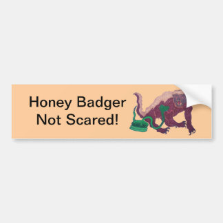 honey badger not scared bumper sticker