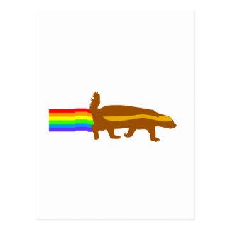 honey badger rainbow rainbow postcard