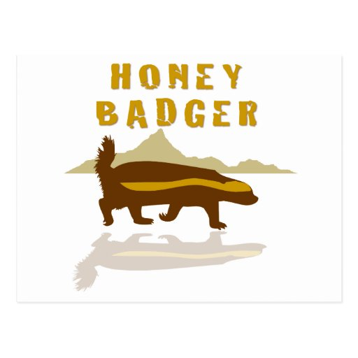 honey badger reflection postcard