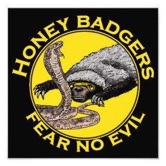 Honey Badgers 'fear no evil' Photo Print