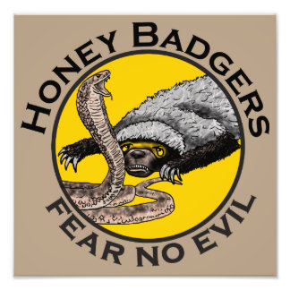 Honey Badgers 'fear no evil' Photographic Print