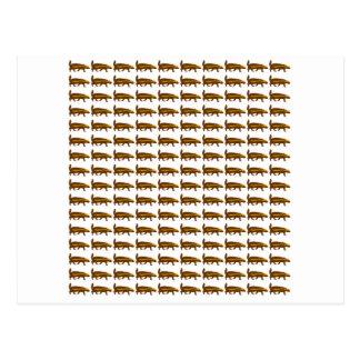 Honey Badgers Postcard