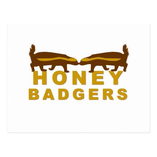 honey badgers postcards