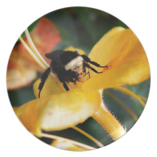 Honey Bee and Tiger Lily Party Plate