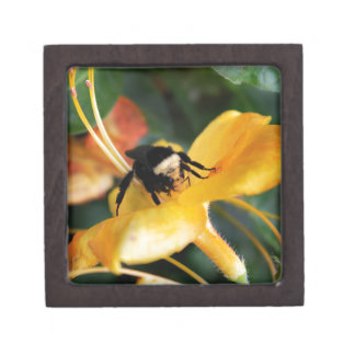 Honey Bee and Tiger Lily Premium Keepsake Boxes