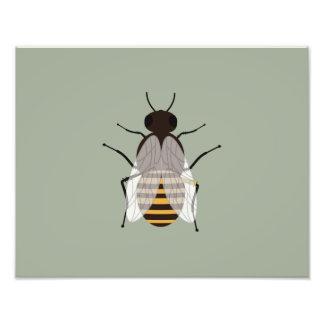 Honey bee art photo