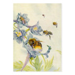 HONEY BEE BASKET TAGS ~ GIFT TAG CARDS & BUSINESS PACK OF CHUBBY BUSINESS CARDS