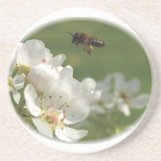 Honey bee coaster