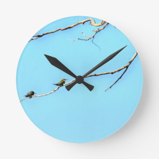 HONEY BEE EATER BIRD QUEENSLAND AUSTRALIA WALL CLOCKS