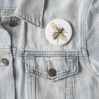 Honey Bee Illustration Vintage Design Badge