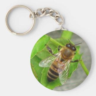 Honey Bee Key Chain